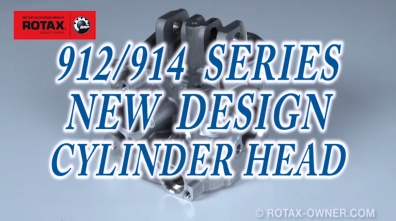 Rotax 2013 cylinder heads